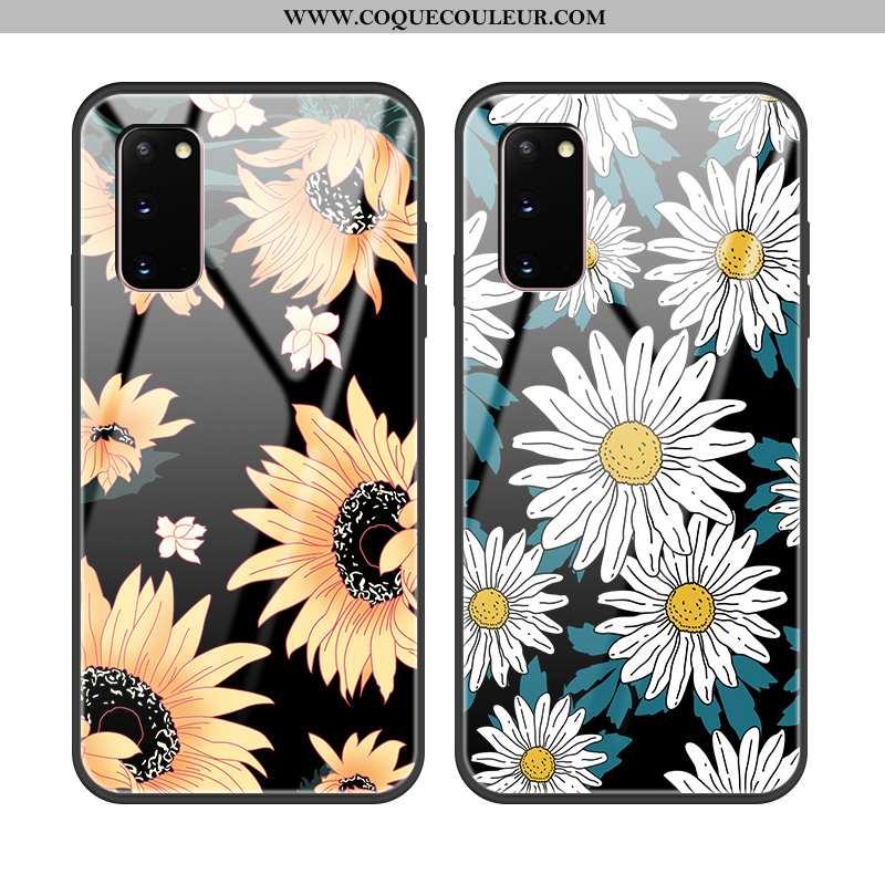 Housse Samsung Galaxy S20 Protection Noir Étui, Étui Samsung Galaxy S20 Verre Coque