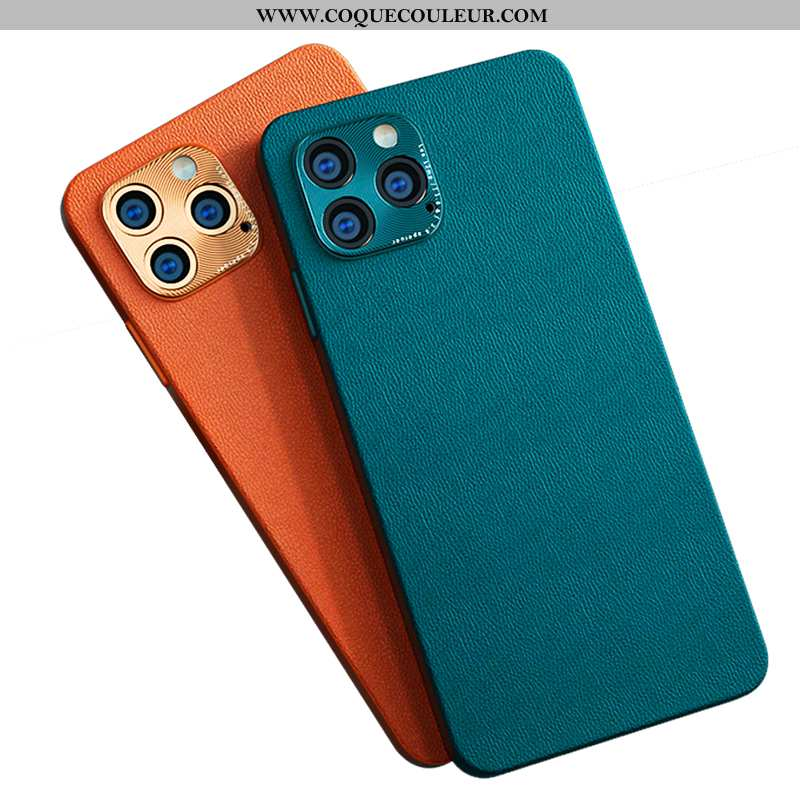 Housse iPhone 12 Pro Max Cuir Étui Tout Compris, iPhone 12 Pro Max Silicone Coque Verte